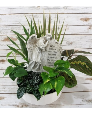 Treasured Memory Planter Dish Garden Plant