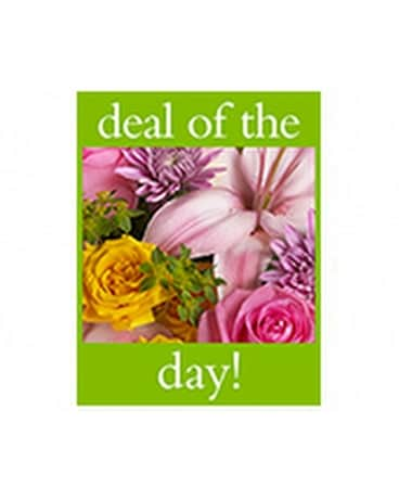 Deal Of The Day Bouquet CHOICEST