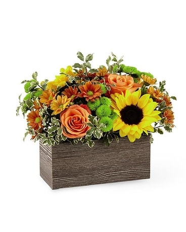 FTD Happy Harvest Flower Arrangement
