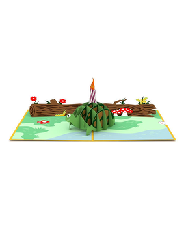 Celebration Turtle 3D card Gifts