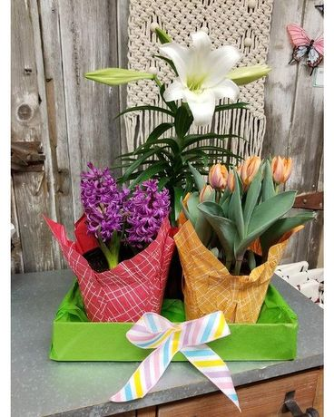 Easter Bloom Box Flower Arrangement
