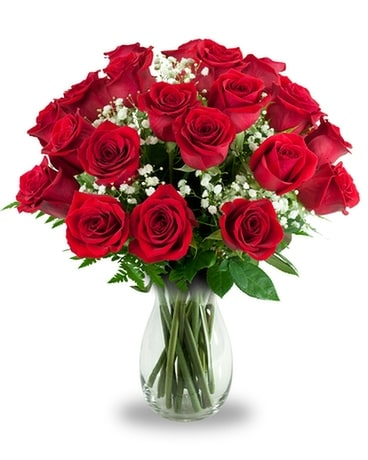 2 Dozen Rose Special - Red Flower Arrangement