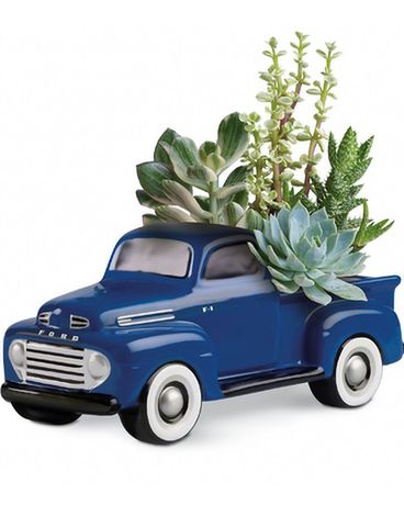 His Favorite Ford F1 Pickup Dish Garden Plant