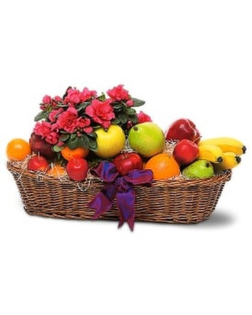 Plant and Fruit Basket Flower Arrangement