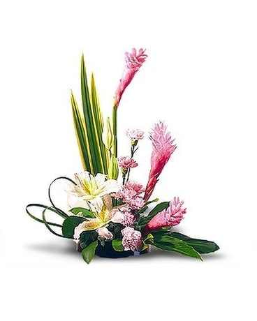Shocking Pink Gingrer Flower Arrangement