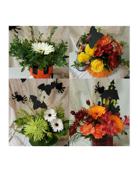 Halloween Designers choice- starting at 65.00