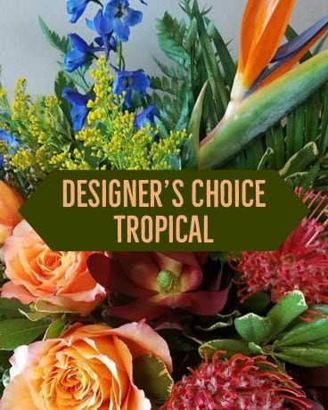 Designer's Choice- Tropical