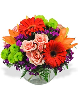 Burst of Color Flower Arrangement