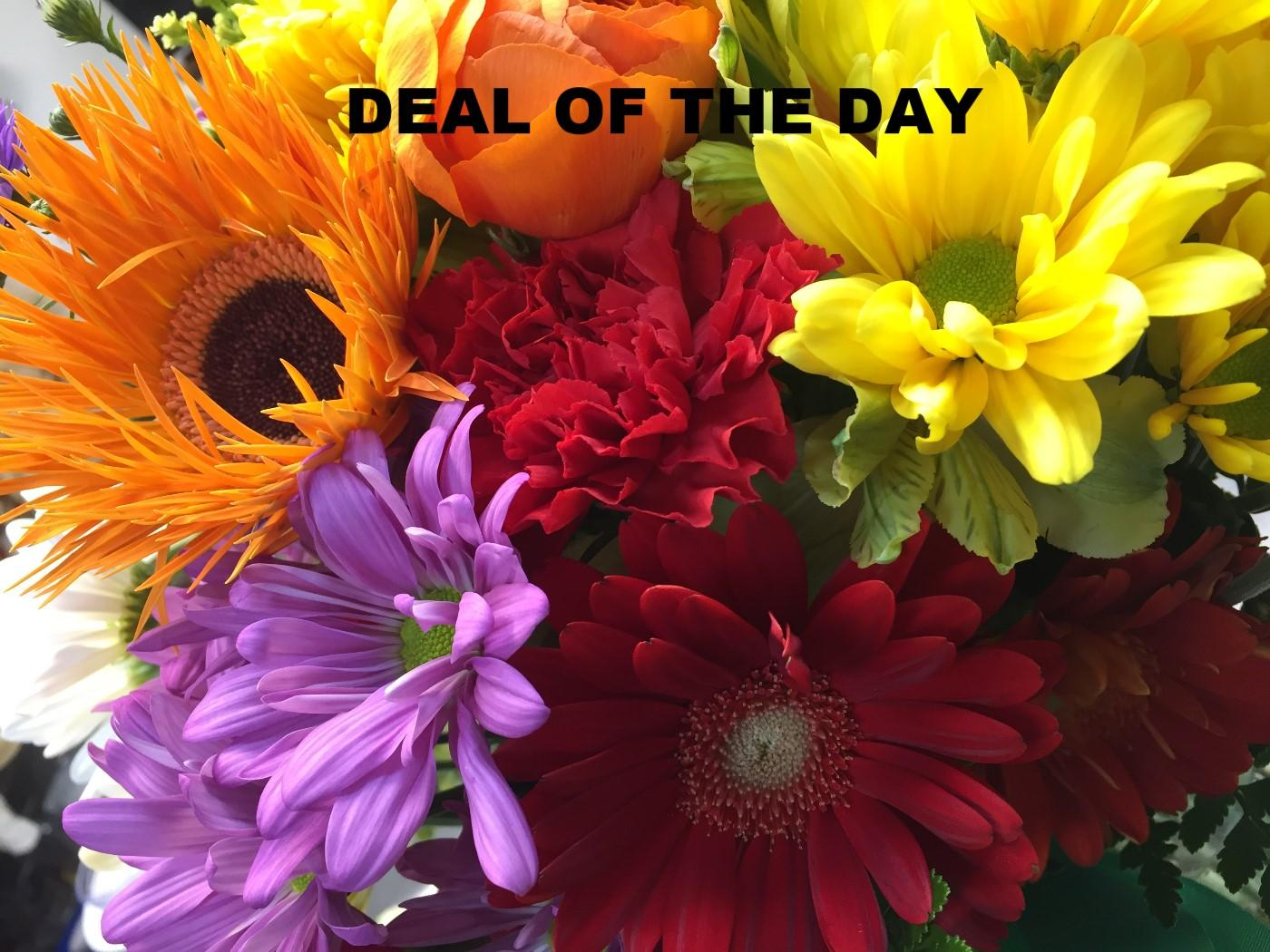 Get Well Flowers Delivery St. Petersburg FL - Hamiltons Florist