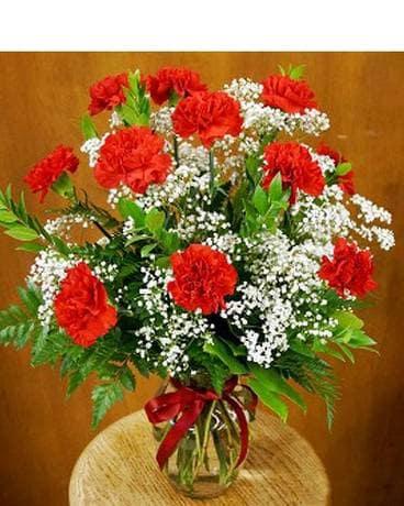 dozen red carnation bouquet