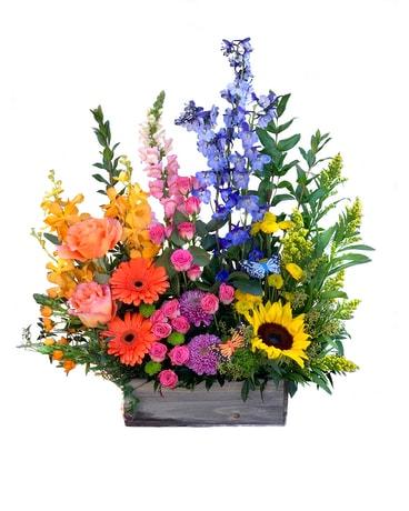 Wellington Florist Flower Delivery By Wellington Florist