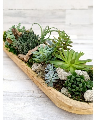 Trough of Succulents Flower Arrangement