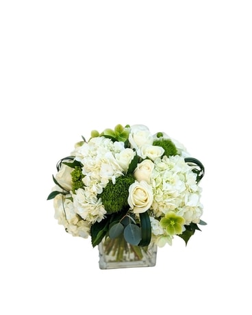 White Polo Cube Flower Arrangement