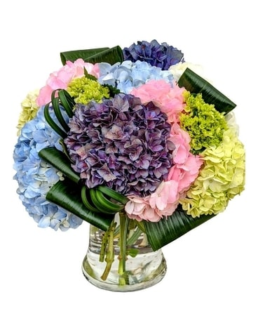 Mighty Hydrangea Premium Flower Arrangement