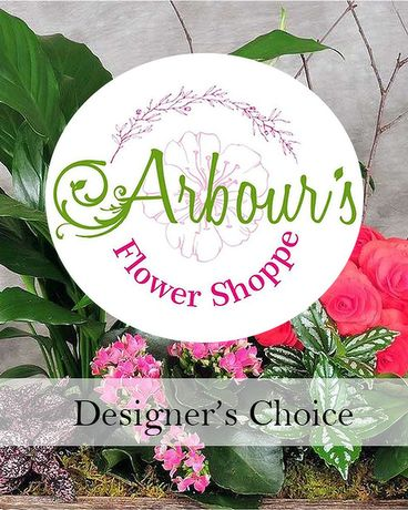 Designer's Choice Living Planter Flower Arrangement