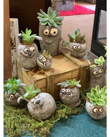 Rock Friends Plant Container Gifts