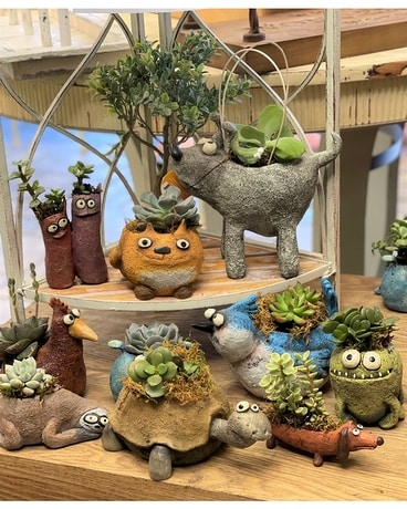 NEW Rock Friends Plant Containers with Succulent Plant