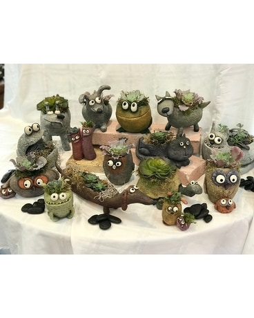 Rock Friend Planters that include live succulent Plant