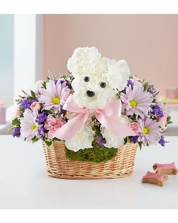 Pink Puppy Dog Sherwood Original Flower Arrangement