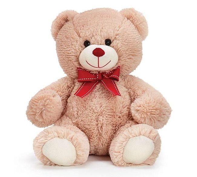 Medium Valentine Bear