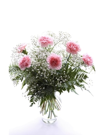 6 Pink Carnations Flower Arrangement