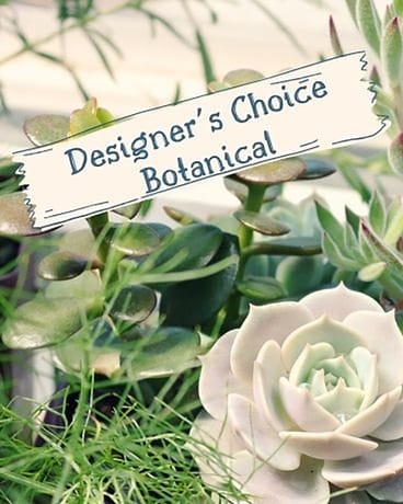 Designer's Botanical Flower Arrangement