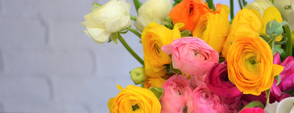 Lehrers flowers flower delivery denver parker co send flowers today a bouquet for any recipient mightylinksfo