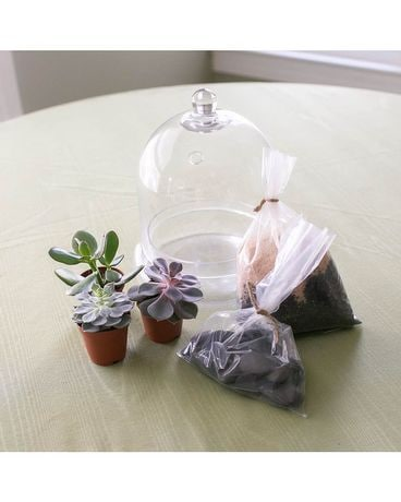 Cloche Succulent Kit Flower Arrangement
