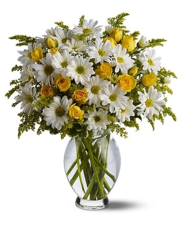 Teleflora's Daisy Days Deluxe Flower Arrangement