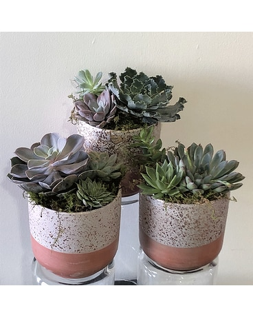 Desert Love Flower Arrangement