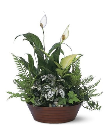White Garden Flower Arrangement