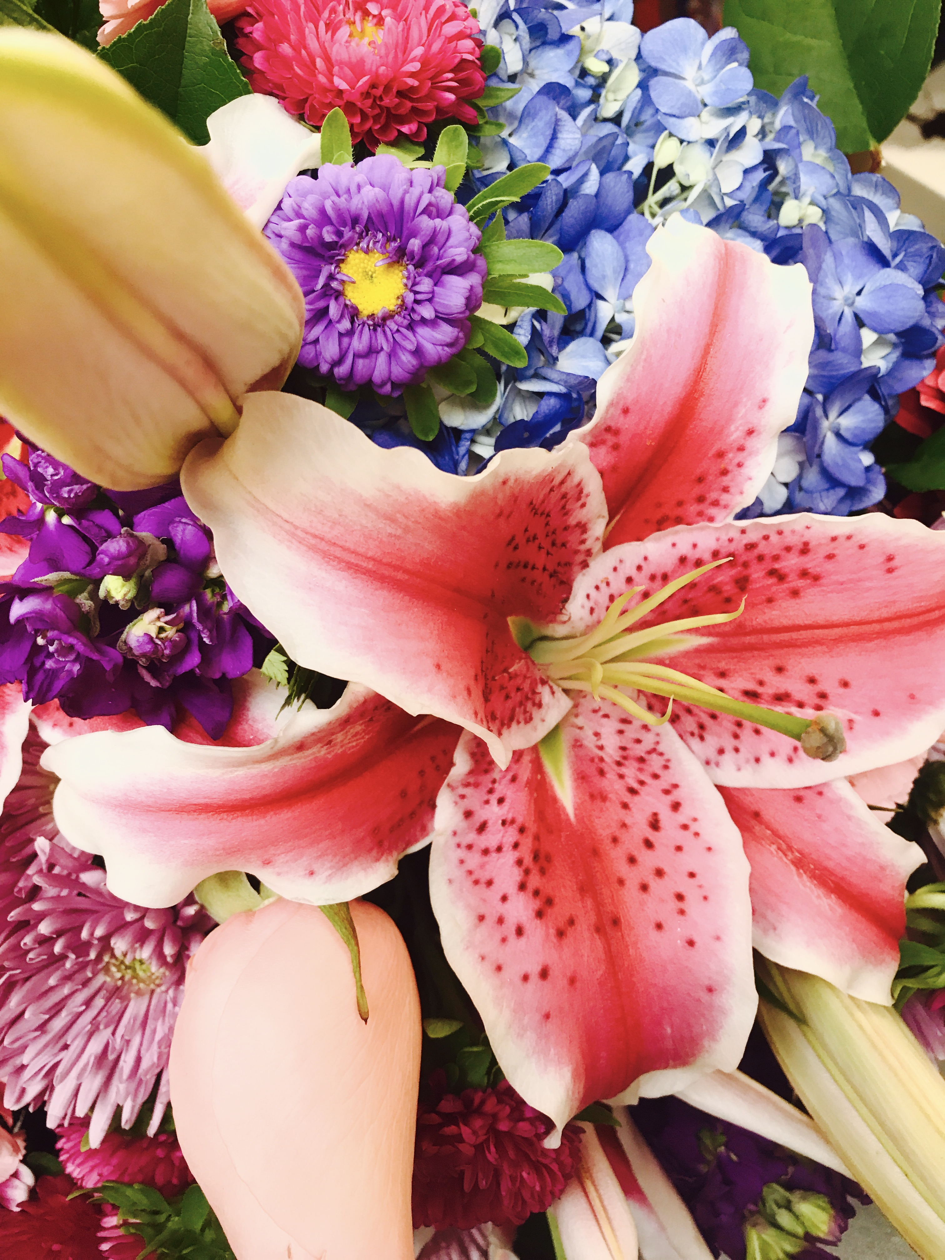 El Cerrito Florist Flower Delivery By Dream World Floral Gifts