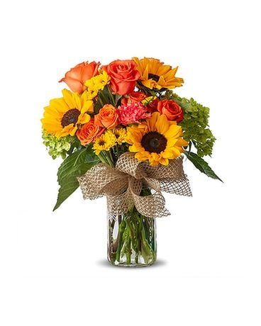 Gainesville Florist - Flower Delivery by Floral Expressions