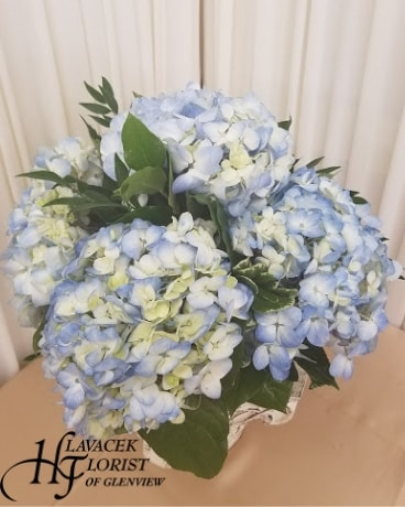 Skies of Blue Flower Arrangement
