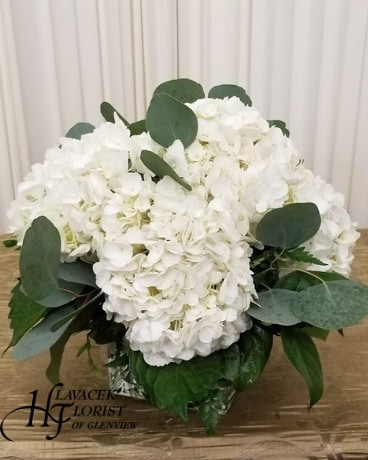 Heavenly Hydrangea Flower Arrangement