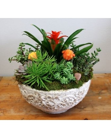 Stone Succulents Flower Arrangement