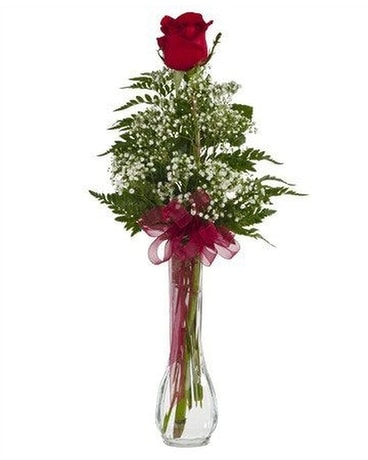 Single Rose Budvase Flower Arrangement