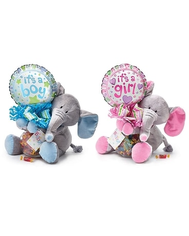 Baby Elephant Gift Set Gifts