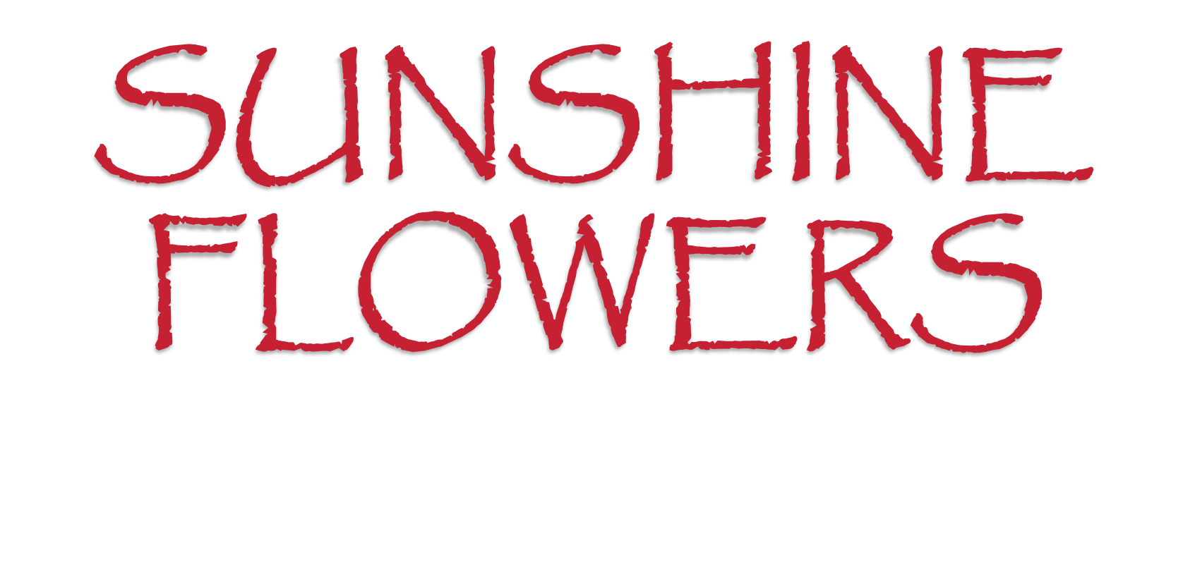 Dallas Florist Flower Delivery By Sunshine Flowers Greenhouse