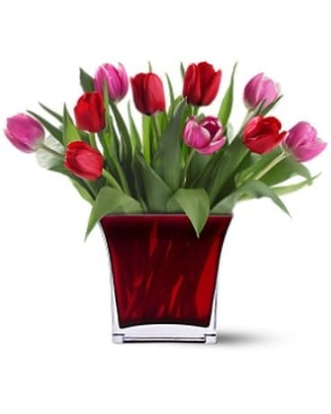Teleflora's Tulips of Love Bouquet Flower Arrangement