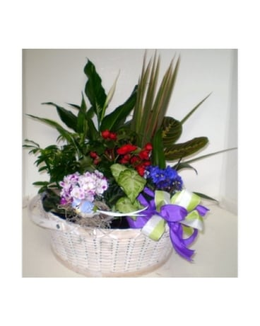 Gardener's Delight Flower Arrangement