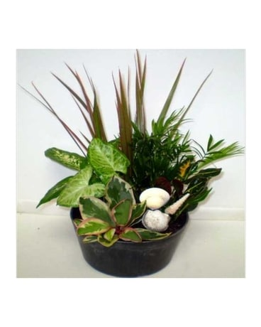 Sea Shell Garden Flower Arrangement