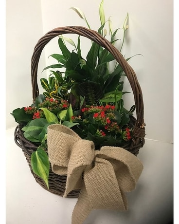Bountifull Basket Flower Arrangement