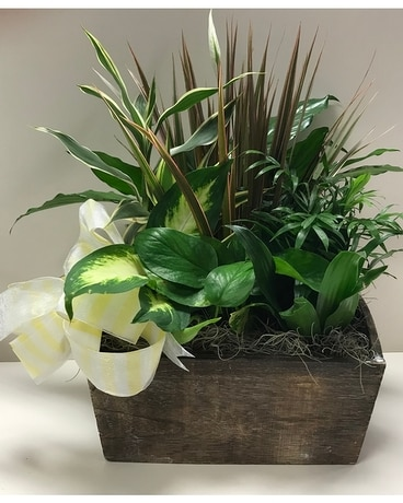 Planters Delight Flower Arrangement