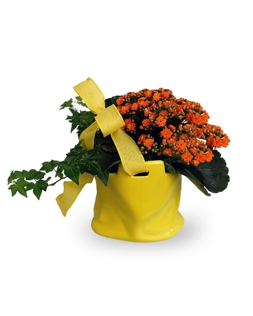 Pocket Full of Sunshine Flower Arrangement