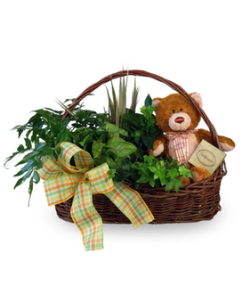 Teddy Bear Basket