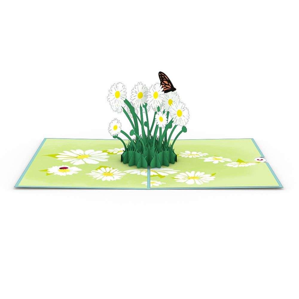 LovePop 3D Paper Sculpture Daisy Patch Card