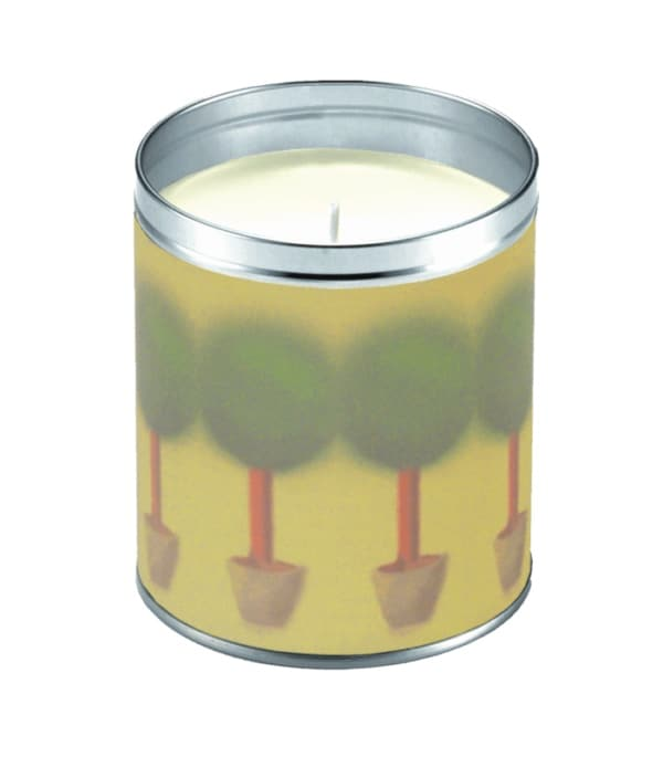 Aunt Sadie's Potted Rosemary Candle