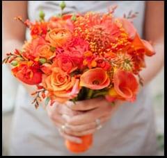 Coral Florals