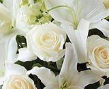 Scarletts Flowers Sympathy White